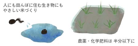 """""""復活ササニシキの秘密②"""""""