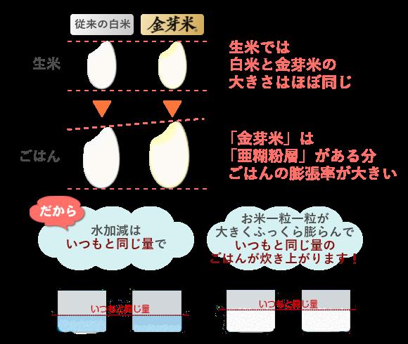 金芽米炊き増えの秘密
